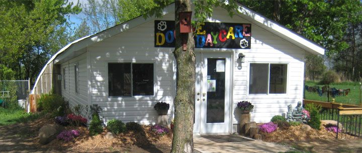 Our Doggie Daycare Guidelines & Philosophy